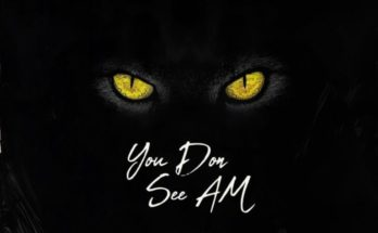 "Yung6ix – ""You Don See Am"" ft. Erigga, Payper Corleone, Dr Barz www.djitunez.com"