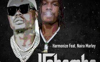 Harmonize ft. Naira Marley – Ushamba -www.djitunez.com