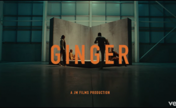 Download WizKid – Ginger - www.djitunez.com