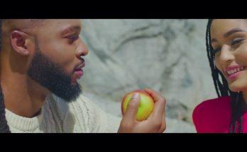 Download-video-Flavour-Omo T'emi-djitunez.com