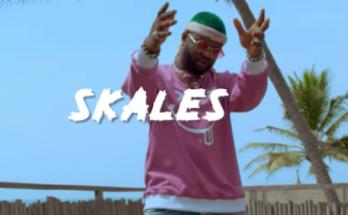 "Download MP3 + Video -Skales – ""Kayefi"" -www.djitunez.com"
